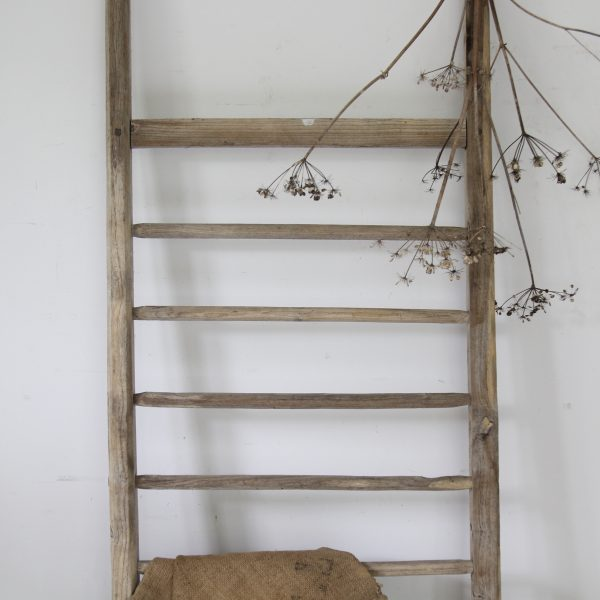 Early 20th century striking wide rustic ladder